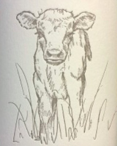 big-table-farm-resonance-vineyard-pinot-noir-2012-label