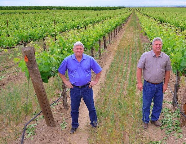 Gamache Vineyard in Basin City, Wash., was first planted in 1982 by brothers Bob, left, and Roger Gamache.