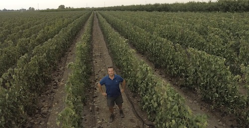 Christophe Baron of Cayuse Vineyards stands in his vienyard in The Rocks District of Milton-Freewater.
