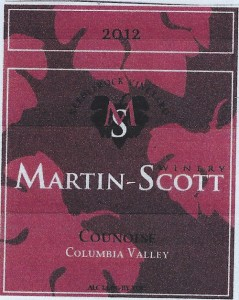 martin-scott-counoise