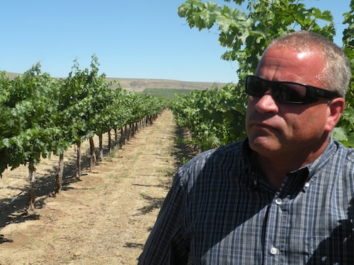 Tom Merkle owns Wautoma Springs Vineyard in Washington wine country.