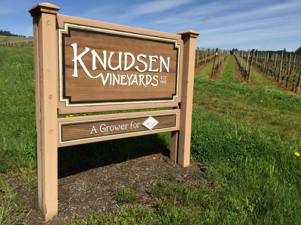 The road through Knudsen Vineyards leads to the tasting room for Erath Winery in the Dundee Hills of the north Willamette Valley.