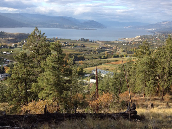 A number of winemakers from the Naramata Bench near Penticton, British Columbia, will be participate in the second annual Ride with a Winemaker weekend in the South Okanagan Valley.