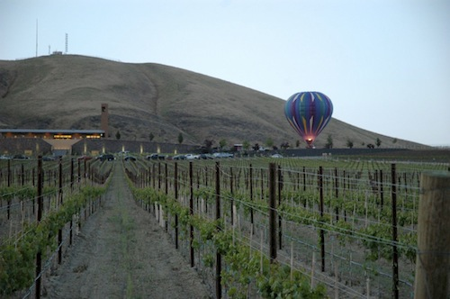Vintners in the Vineyard will be Saturday, June 6 at Col Solare on Red Mountain. (Photo courtesy of the Auction of Washington Wines)