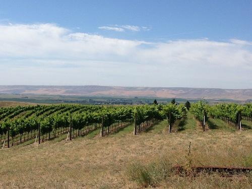 Woodward Canyon Estate Vineyard is in Washington's Walla Walla Valley.