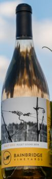 Bainbridge Vineyard-2014-Pinot Gris Bottle