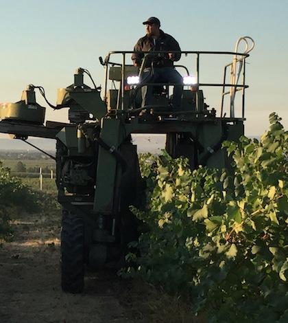 harvest-feature