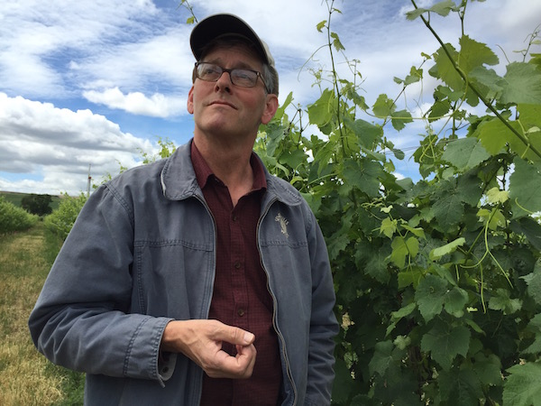 Casey McClellan helped his father, Dr. James McClellan, and family friend Dr. Herb Hendricks, plant Merlot in a vineyard along county road known as Seven Hills Road in 1982.
