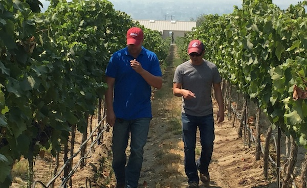 Schlagel Santos uses Grenache grapes from Red Mountain.
