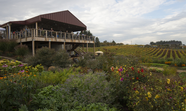 Brooks Winery in Oregon's Eola-Amity Hills is among the Willamette Valley wineries participating in the Willamette Cares Food Share food drive, which runs Nov. 1 through Dec. 19. (Photo by Andréa Johnson Photography/Courtesy of Brooks Winery)