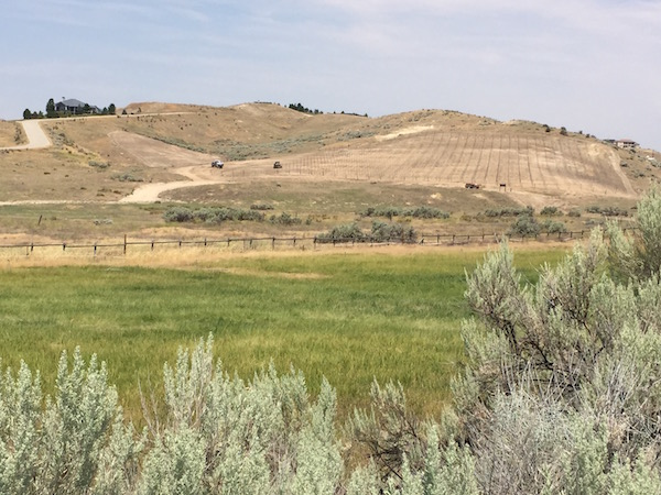 A planned vineyard in the early stages of development on the outskirts of Eagle, Idaho, is within the proposed Eagle Foothills American Viticultural Area.