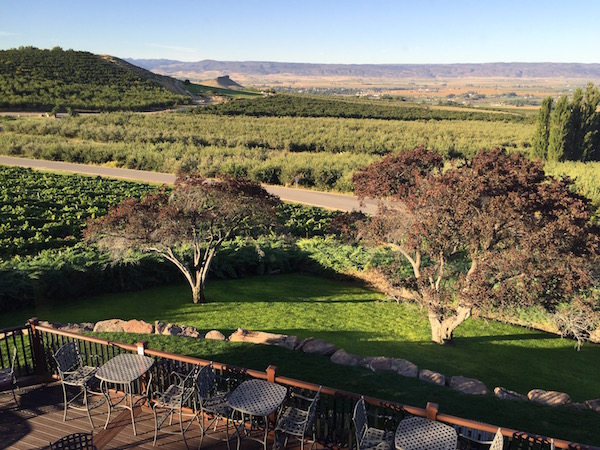 The new patio at Ste. Chapelle offers patrons view of vineyards, orchards and Lizard Butte in Idaho's Snake River Valley.