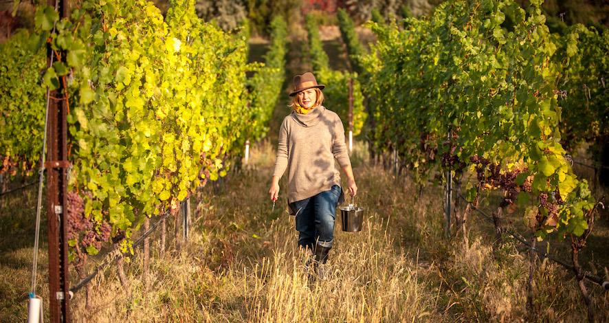 joiefarm heidi noble vineyard - Noble uses 'juicidity' as key ingredient at JoieFarm