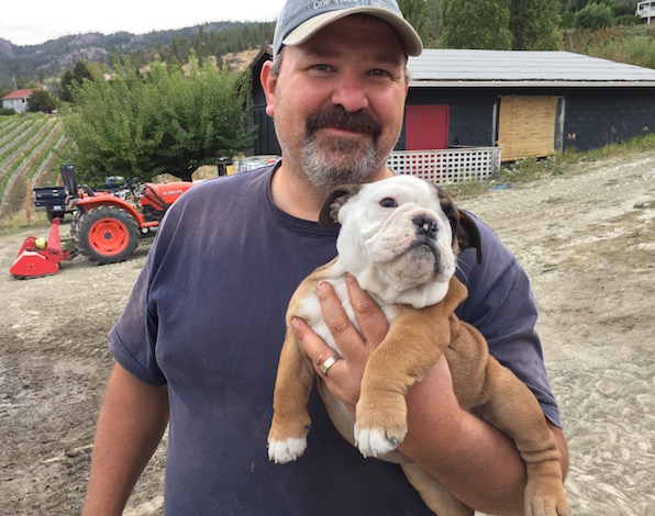 Jay Drysdale, co-owner/founding winemaker of Bella Sparkling Wines in Naramata, British Columbia, named his winery for his sweet-natured English bulldog. Bella died several years ago, but Drysdale recently brought on baby Buddha, and she appears to be just as charming.