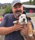 Jay Drysdale, co-owner/founding winemaker of Bella Sparkling Wines, named his winery for his English bulldog. Bella died several years ago, but Drysdale recently brought on baby Buddha, and she appears to be just as charming.