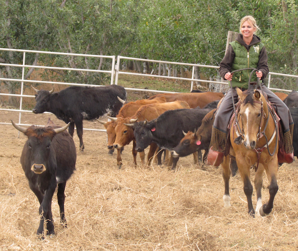 Tiffany Fewel, trail boss at Cherry Wood Bed Breakfast and Barn, also works the cattle at her family's two Yakima Valley ranches.