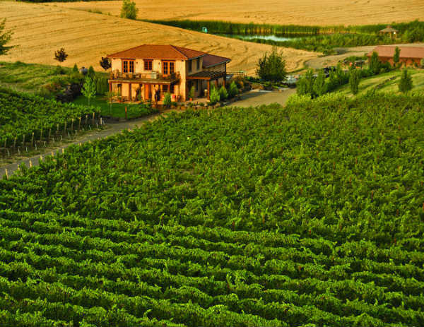 Va Piano Vineyards is in the Walla Walla Valley of Washington state.