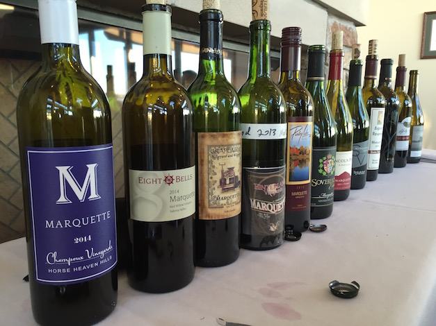 A dozen examples of Marquette — a cross from French hybrid cultivar Ravat 262 and University of Minnesota MN 1094 — were poured on Jan. 29, 2016 at the Walter Clore Wine and Culinary Center in Prosser, Wash.