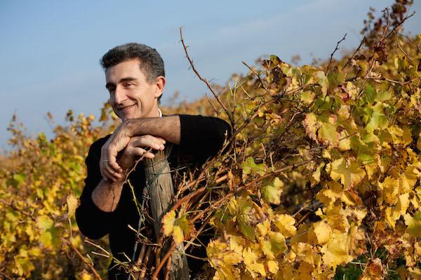 Michel Gassier of Tenet Wines