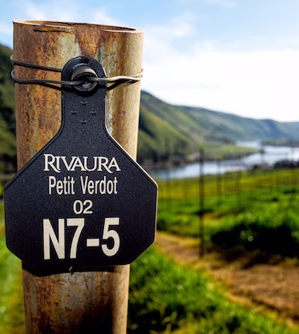 rivaura-vineyard-endpost-2016-feature