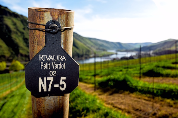 Rivaura is a young planting in the new Lewis-Clark Valley American Viticultural Area along the Clearwater River near Juliaetta, Idaho.