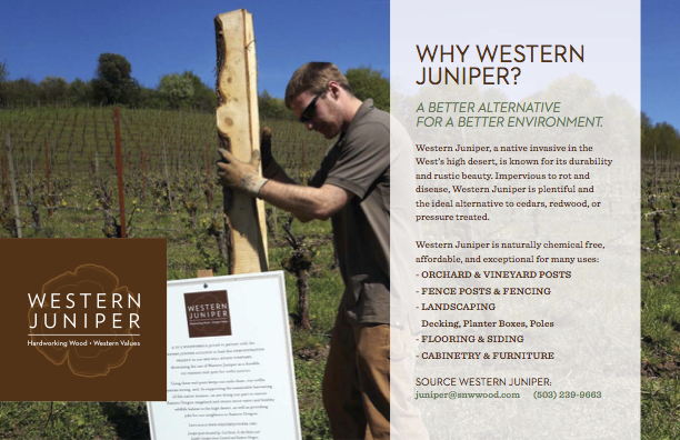 The Western Juniper Alliance promotes various uses of the wood, including vineyard posts, fence posts, fencing, landscaping, flooring, siding, cabinetry and furniture.
