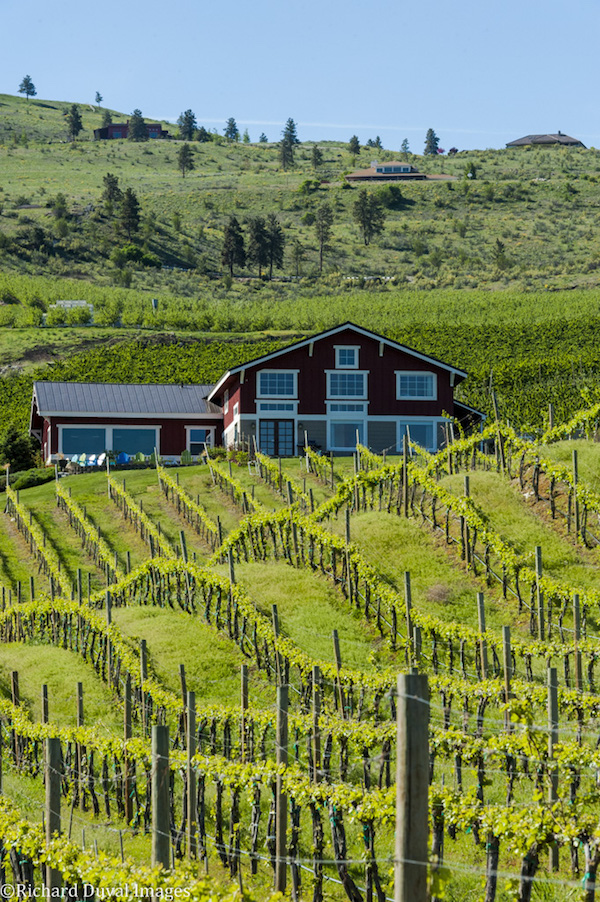 Washington wine grape growers