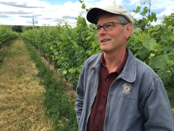 A large percentage of Walla Walla Valley vineyards are in Oregon, including Casey McClelland's estate plantings for Seven Hills Winery in Walla Walla.
