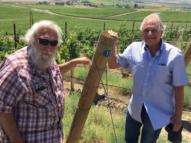 Dick Shaw, left, and Paul Kaltinick own Quintessence Vineyads and share ownership of Obelisco, a 30-acre planting, with another Gig Harbor businessman, Doug Long of Obelisco Estate.