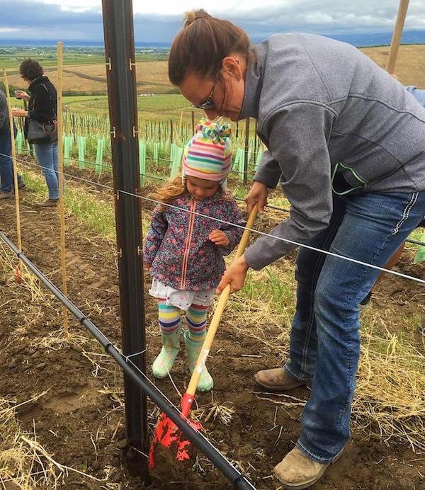 Pambrun Vineyard in Walla Walla Valley