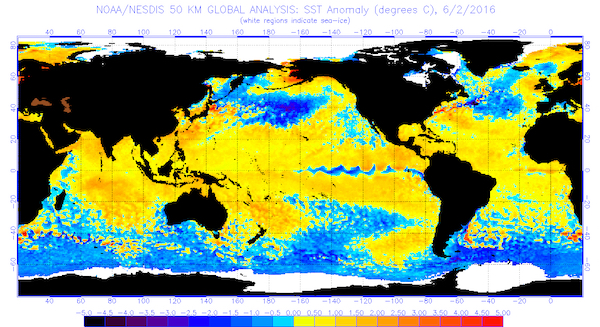 Global sea surface temperatures (°C) for the period ending June 2, 2016 (Image from NOAA/NESDIS)
