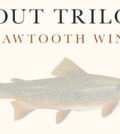 sawtooth winery logo 120x134 - Sawtooth Estate Winery 2015 Trout Trilogy Syrah, Snake River Valley, $35