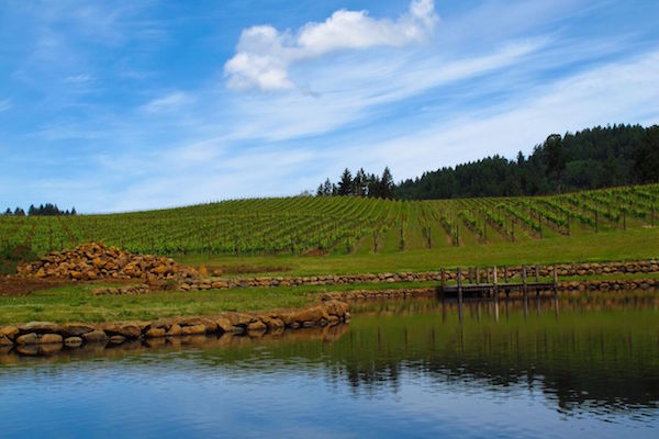 Eola Hills Wine Cellars is west of Salem, Oregon.