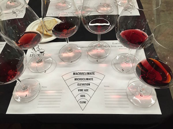 International Pinot Noir Celebration