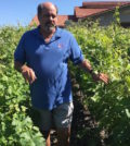 jeff popick feature 120x134 - Walla Walla's Jeff Popick retires this week from viticulture program