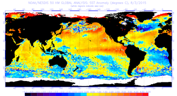 The global sea surface temperatures (°C) for the period ending Aug. 3, 2015. (image from NOAA/NESDIS)