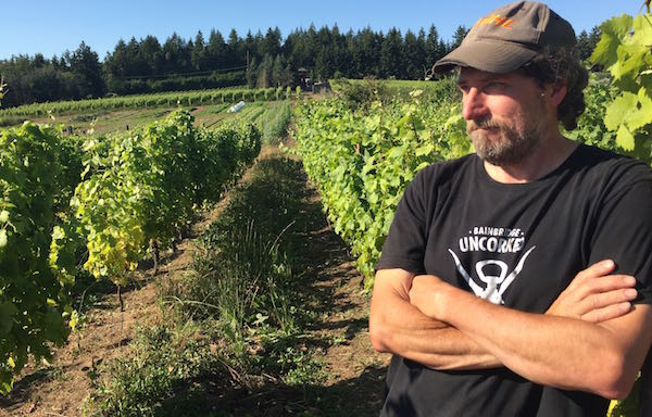 Mike Lempriere of Perennial Vintners