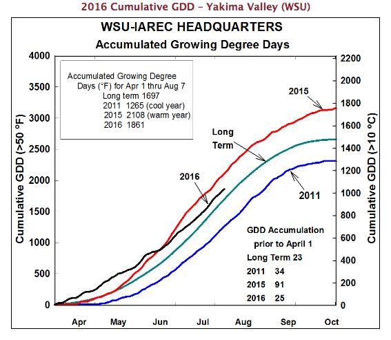 This chart shows growing degree days for 2016 are below last year's record highs but still above the long-term averages. (Image courtesy of Washington State University)