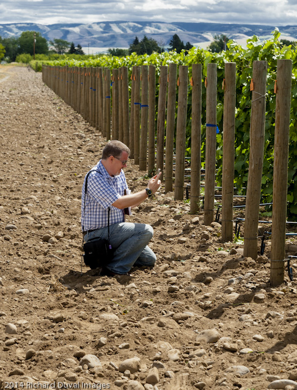 Sean Sullivan, whose blog Washington Wine Report began in 2007, took over in 2014 as Wine Enthusiast magazine's exclusive review and writer about wines from Washington state.