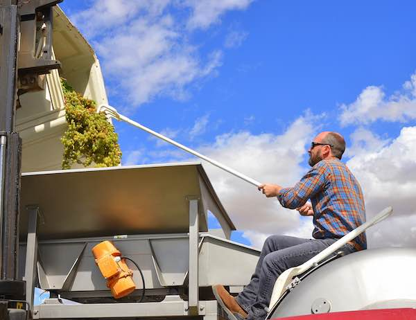 Chris Dowsett, walla walla valley winemaker