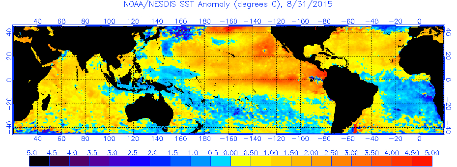 The global sea surface temperatures (°C) for Aug. 31, 2015. (image from NOAA/NESDIS)