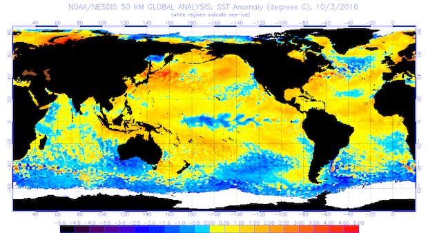 Global sea surface temperatures (°C) for the period ending Oct. 3, 2016. (Courtesy of NOAA/NESDIS)