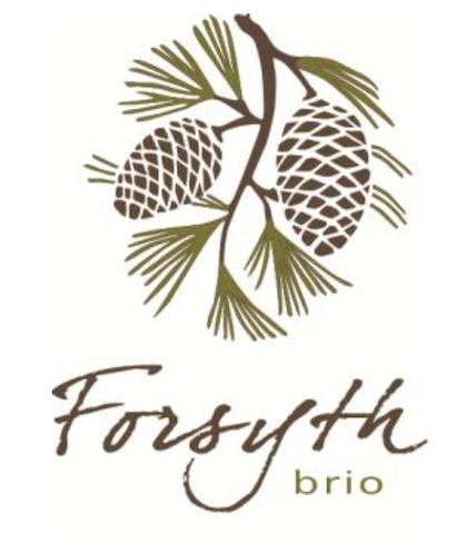 forysth-brio-logo