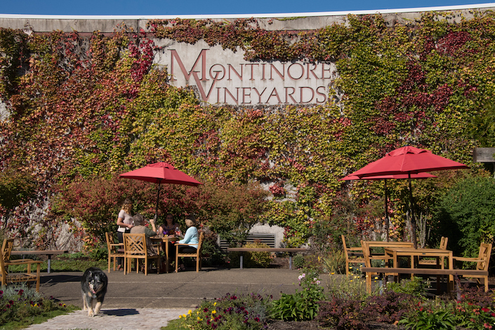 Montinore Estate, one of Oregon's largest estate winery, features a 210-acre Demeter certified biodynamic vineyard near Forest Grove. (Photo courtesy of Ackley Beverage Group)