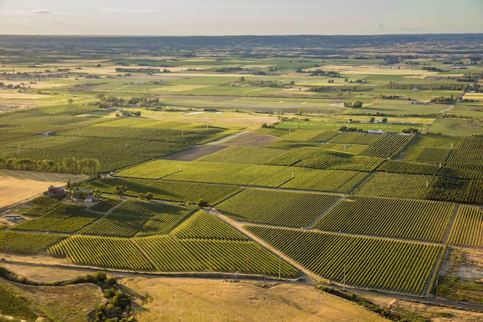 seven hills vineyard old blocks aerial - Crimson Wine Group buys historic blocks of Seven Hills Vineyard