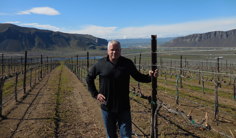 tom merkle vineyard photo - Auction of Washington Wines climbs to No. 4 in U.S. rankings
