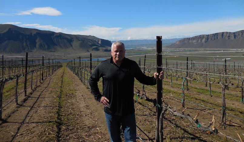 tom merkle vineyard photo - Josh Lawrence, Tom Merkle team up to buy Conner Lee Vineyard