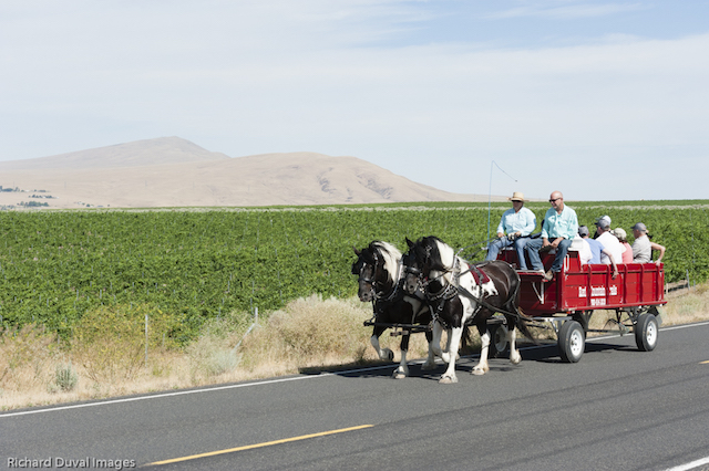 red mountain carriage 2017 - Cabernet Summit earns praise for Red Mountain wines, hospitality