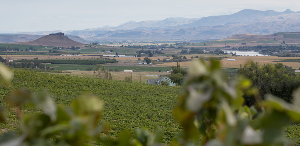 snake river valley lizard butte ste chapelle deck idaho wine commission - Idaho wine industry prepares for 10th annual judging