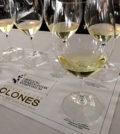 oregon chardonnay symposium 2015 feature 120x134 - 'Style council' to lead Oregon Chardonnay Celebration